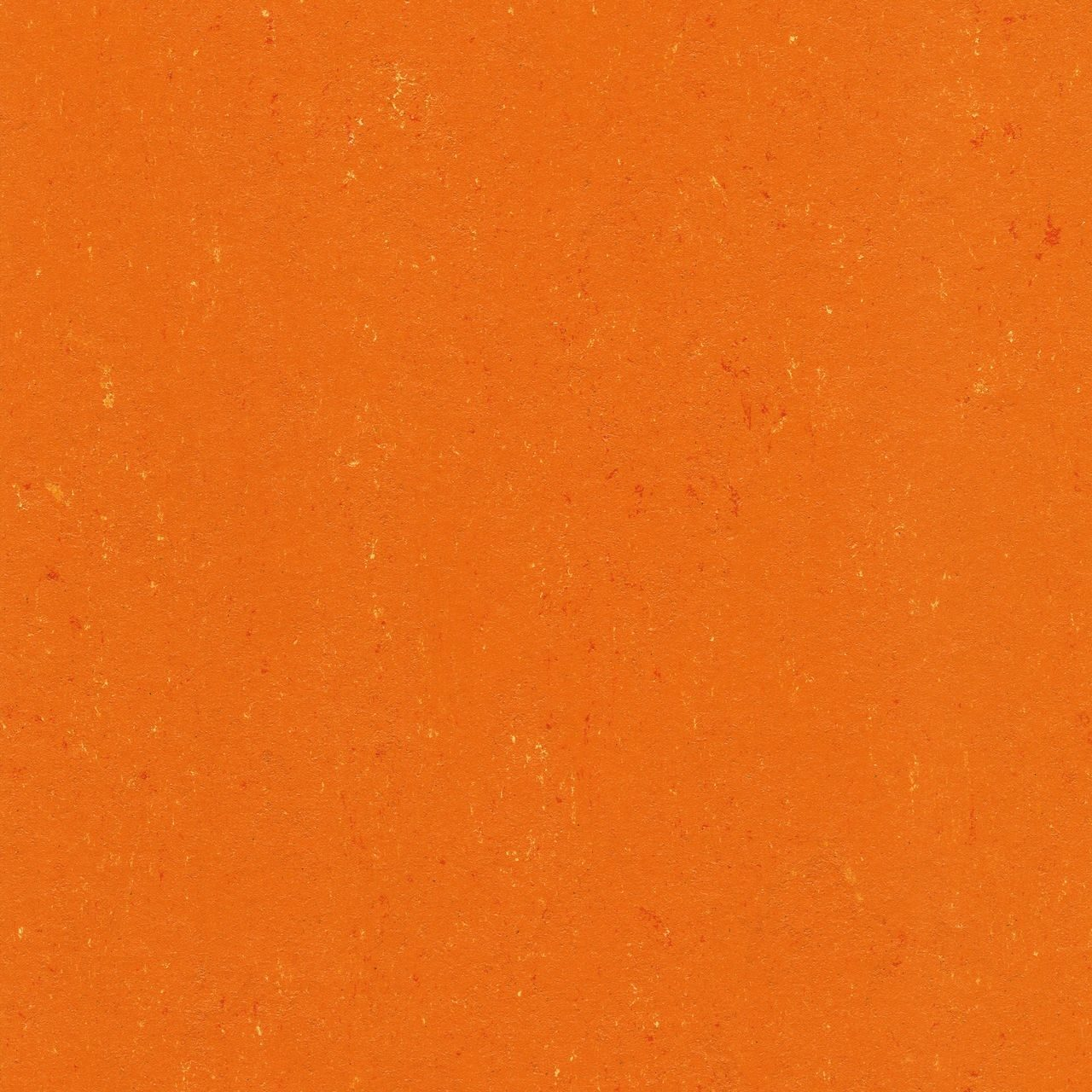 Colorette LPX/PUR 131-170 kumquat orange